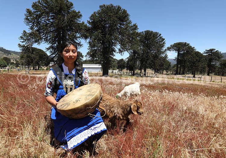 Native mapuche jouant du tambour (Kultrún)