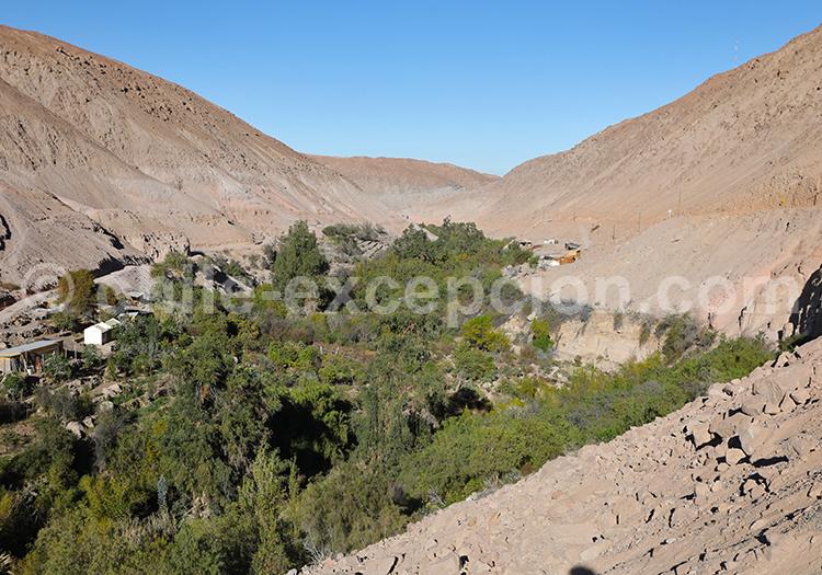 Découvrir Codpa au Nord du Chili