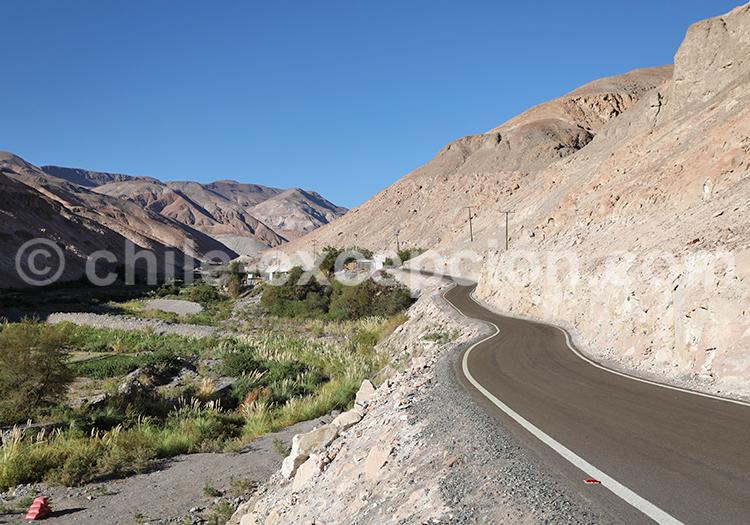 Sur les routes de la vallée de Camiña, Chili