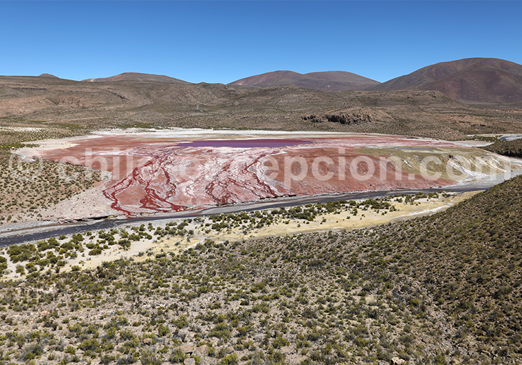 Laguna Roja, Iquique, Arica et Parinacota