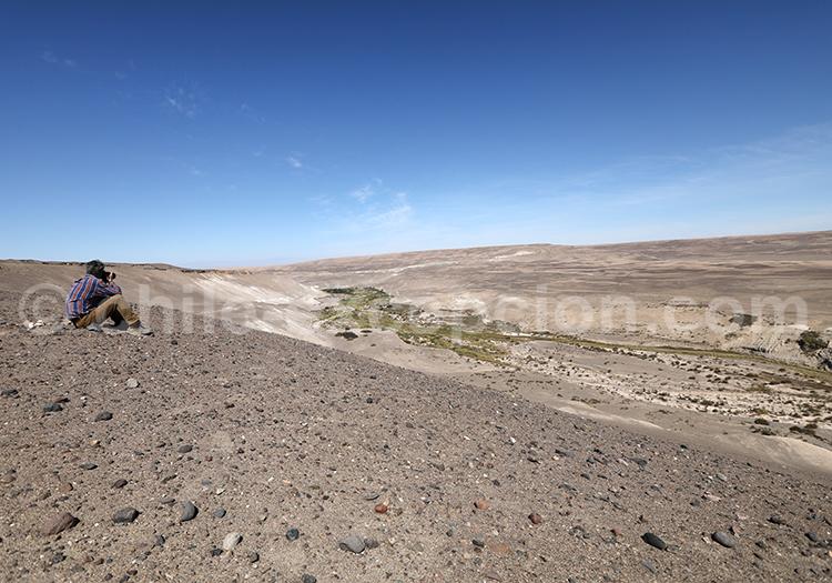 Site exceptionnel sur les géoglyphes de Tiviliche