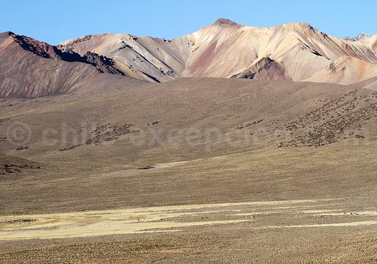 Alentours de Caquena, Chili
