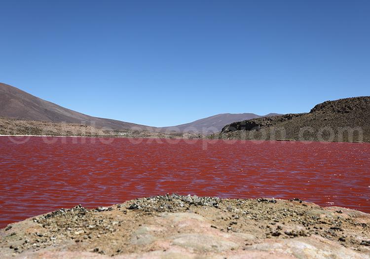 Trouvailles du Chili, la Laguna Roja