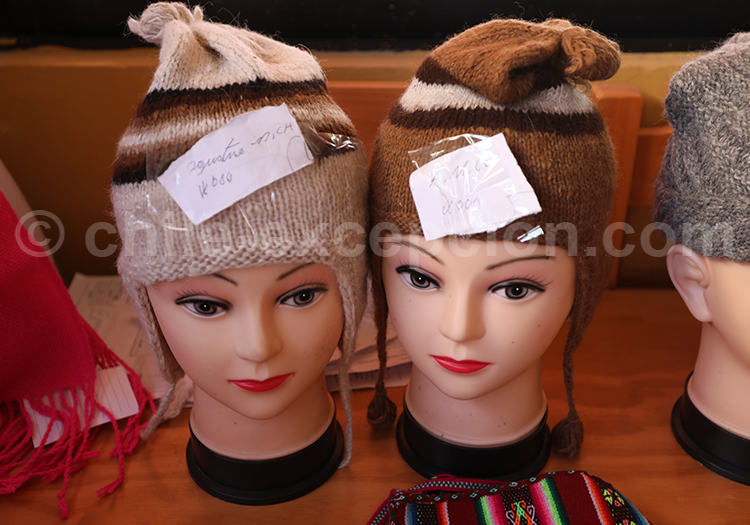 Bonnets des Andes, Camiña, Chili