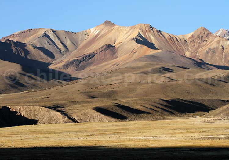 Voyage à Caquena, Chili