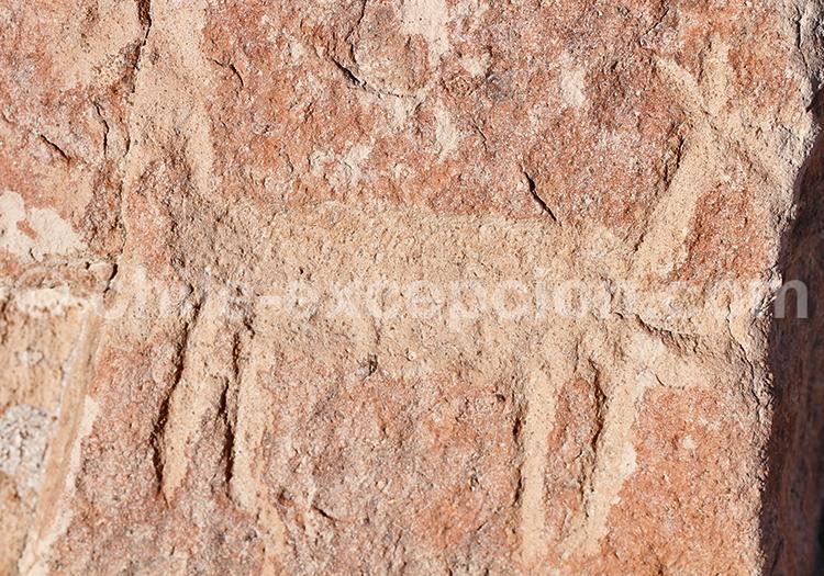 Art rupestre du Chili, Codpa
