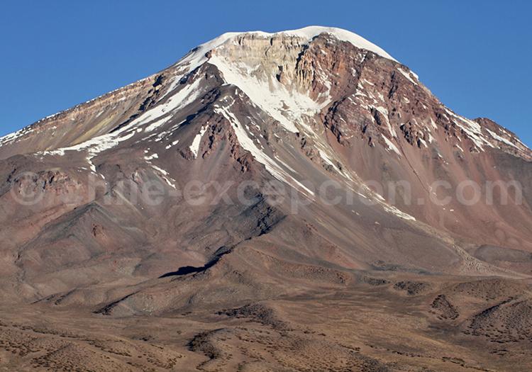 Plateau andin, Caquena, Chili