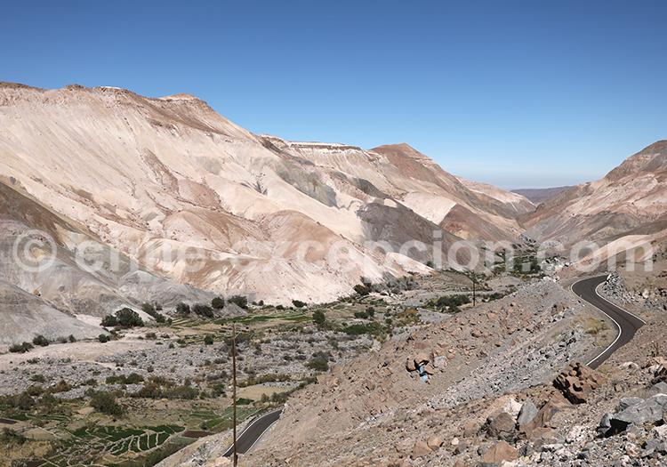 Chillaiza, vallée de Camiña, Chili
