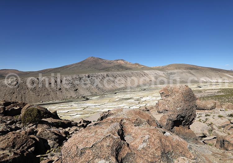 Bofedales de Caquena, altiplano andin