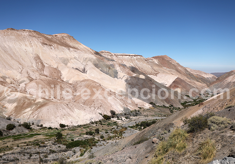 Calatambo, vallée de Camiña, Chili