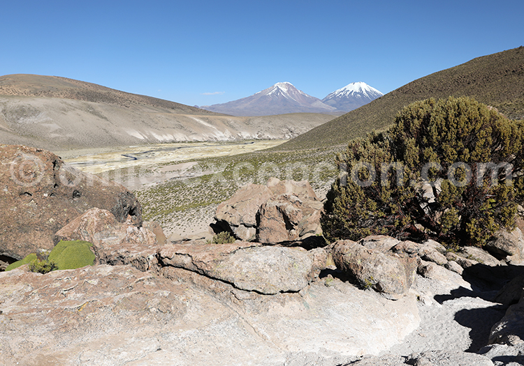 Sentiers des bofedales de Caquena, Chili