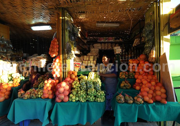Fruits du Chili, Pica et Matilla, Chili