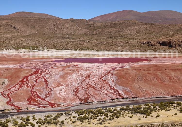 Lacs des Andes du Nord du Chili