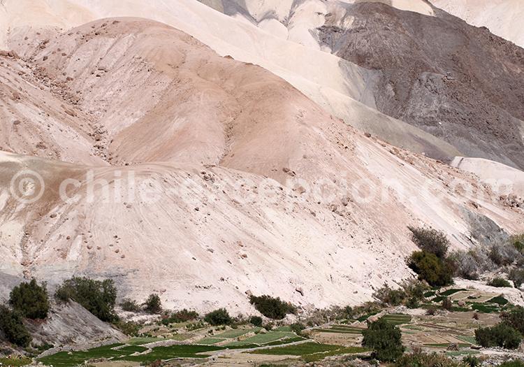 Roches de la vallée de Camiña, Chili