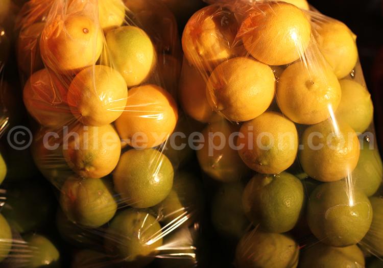 Production de fruits, Pica et Matilla, Chili