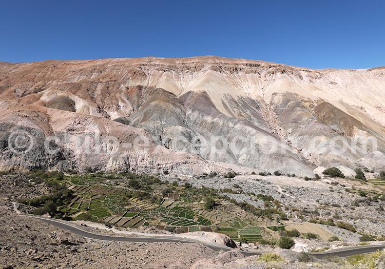 Cerro Pumire, Camiña, Nord du Chili