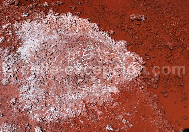 Sédiments de la laguna Roja, Chili