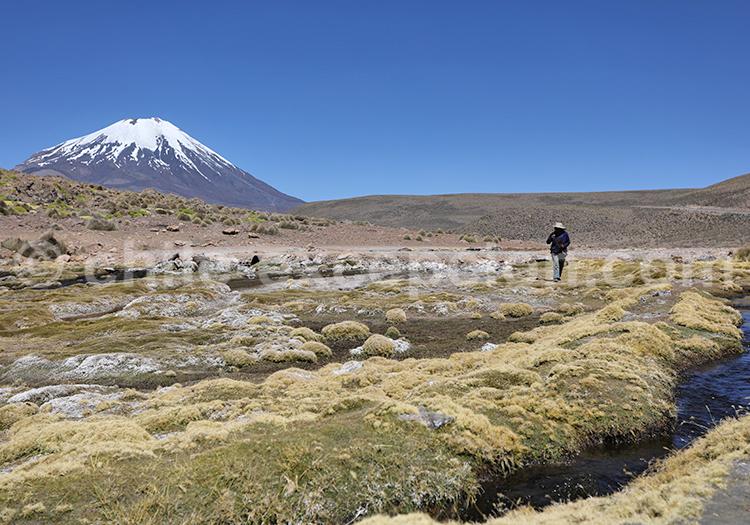 Voyage eco tourisme, autotour au Chili
