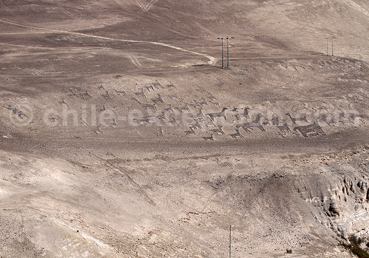 Géoglyphes de Tiviliche, désert du Chili