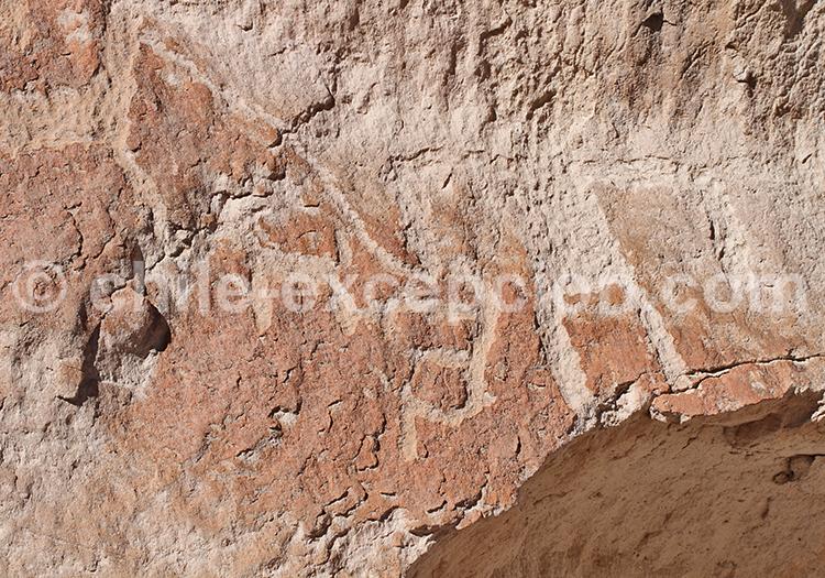 Visiter des pétroglyphes en plein désert, Codpa, Chili