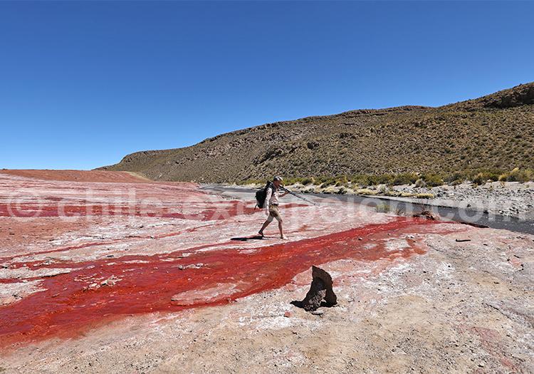 Enquête sur le terrain, désert du Chili