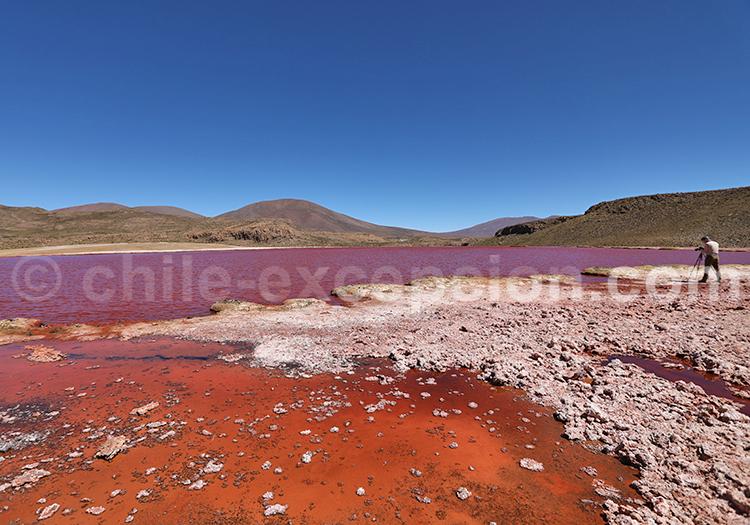 Photos de voyage, Nord du Chili