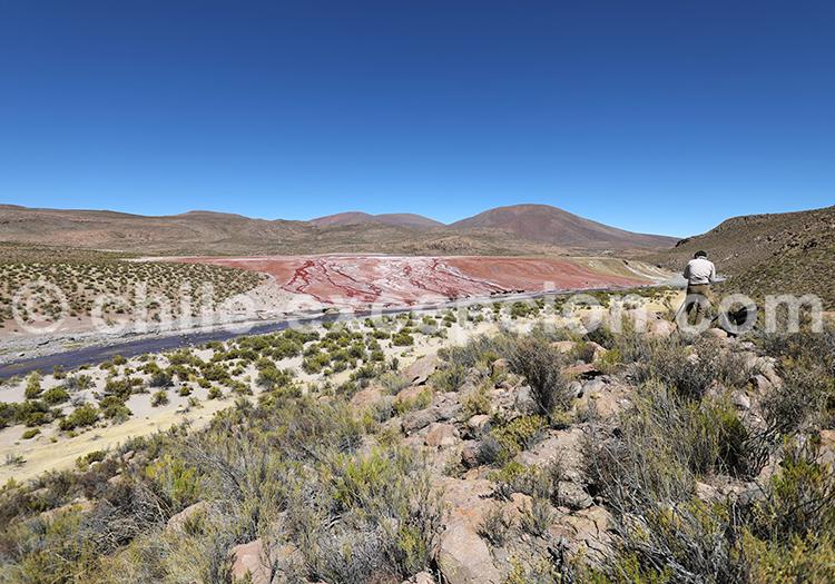Photographie au Chili, désert d'Atacama