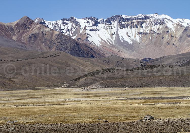 Plateau des Andes, Chili