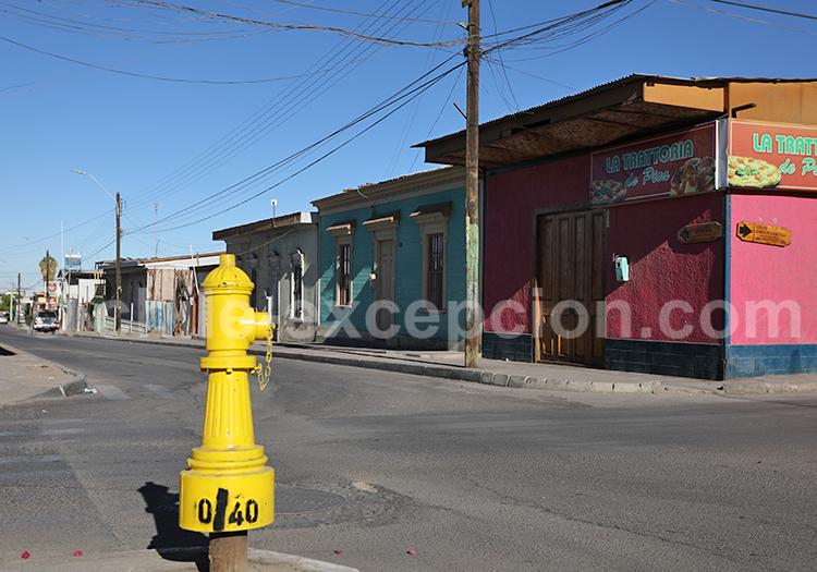 Désert du Chili, villages de Pica et Matilla