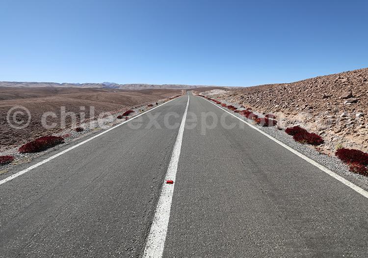 Route de Codpa à Putre, Chili