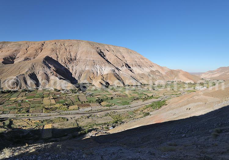 Découvrir la vallée de Camiña, Chili