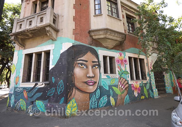 Pourquoi visiter le quartier Brasil de Santiago de Chile