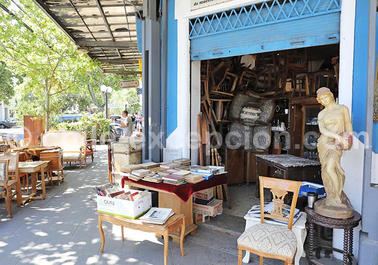 Magasins d'Antiquités, Barrio Italia, Santiago de Chile