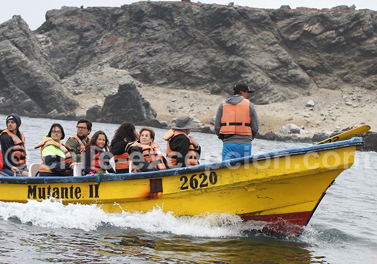 Excursion nautique, Nord du Chili