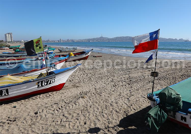 Agence de voyage locale, La Serena, Chili