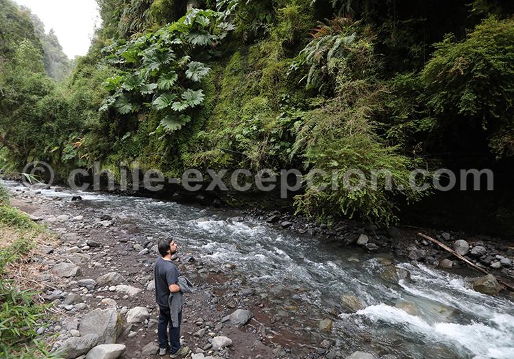 Le plus ancien parc du Chili