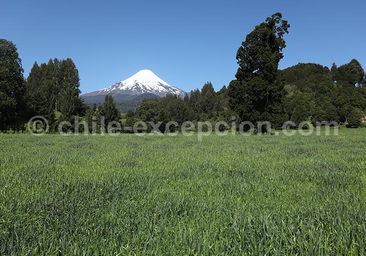 Volcan Osorno, région des lacs et volcans, Chili