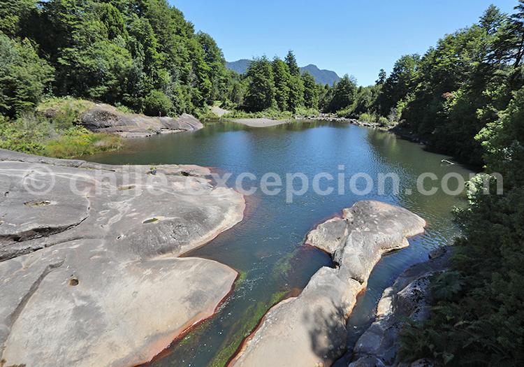 Réserve Alerce Andino, Chili