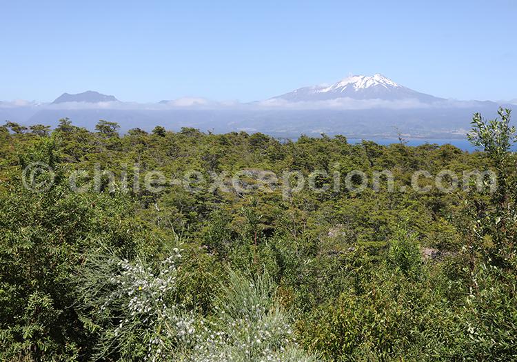 Parc Vicente Perez Rosales, Chile