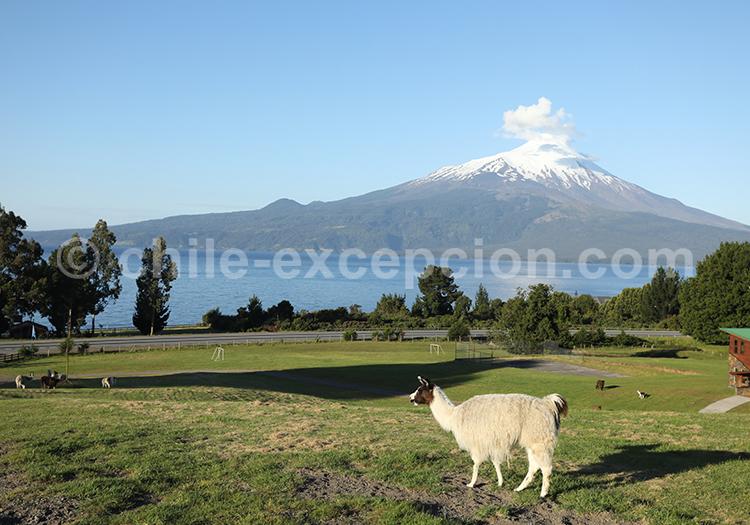 Volcan Osorno, Chili