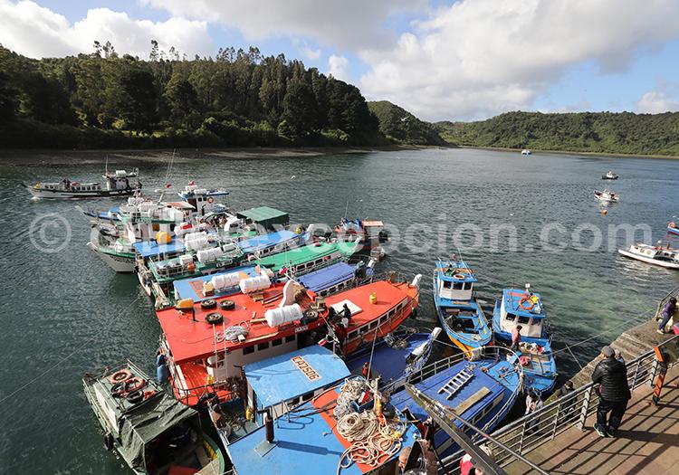 Caleta de Angelmó, Puerto Montt