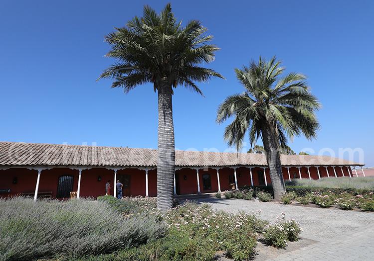 Bodega Santa Rita, Chili