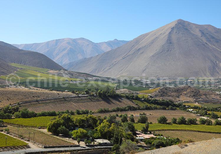 Vicuña, région Elqui, Chili
