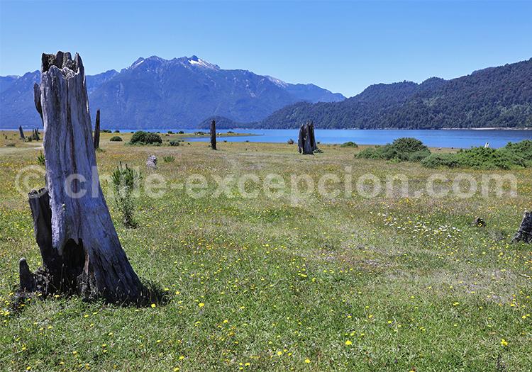 Lac Chapo, Chili