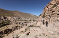 Escapade sous les étoiles Atacama