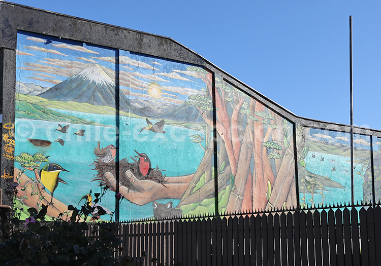 Street Art, Llanquihue, Chili