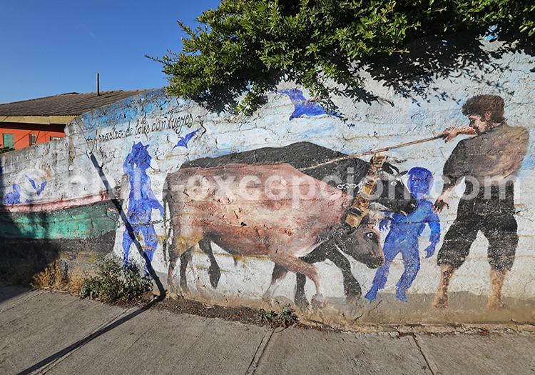 Art de rue, Pelluhue, Chili
