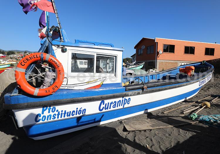 Curanipe, ville portuaire chilienne
