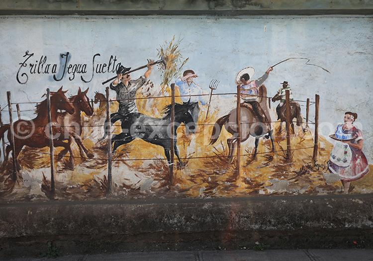 Cultura huasa, Pelluhue, Chile