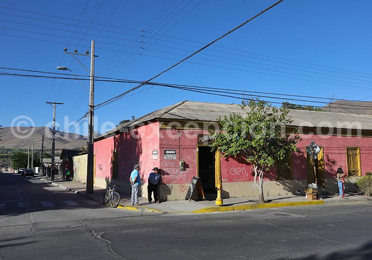Visiter Vicuña, Chili